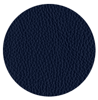 Blue Leather Cloth